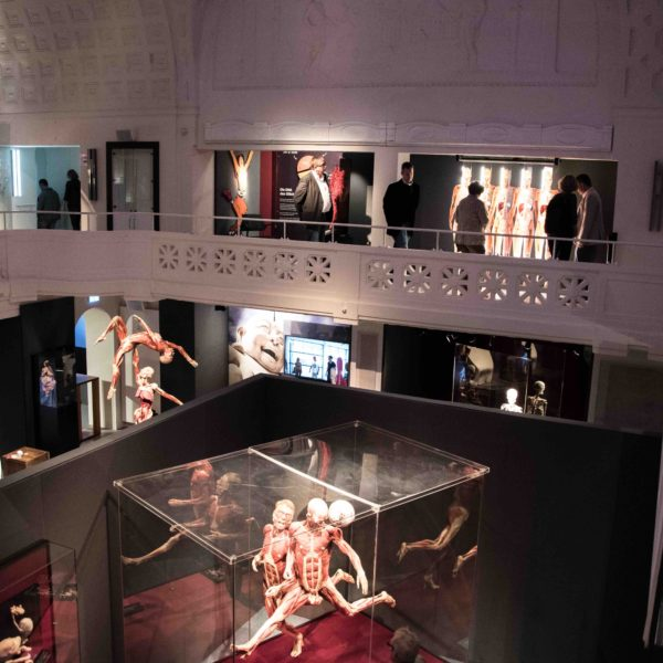 Exhibition impression