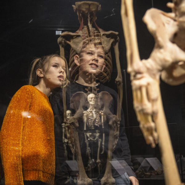 Impression (DT) – Girl and boy with plastinate refections