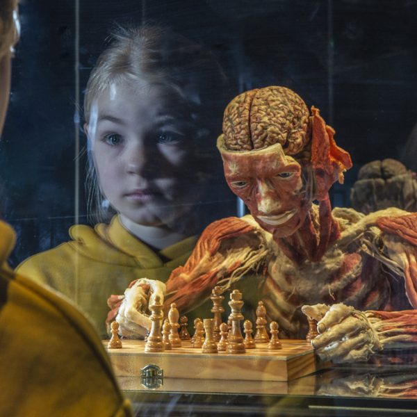 Impression (DT) – Girl and chess player